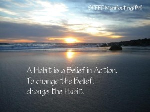 A Habit is a Belief in Action.